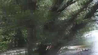Amateur bigtit deepthroats by river for cash Thumbnail